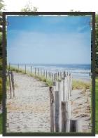 bedrucktes Glas | Strand/Dünen